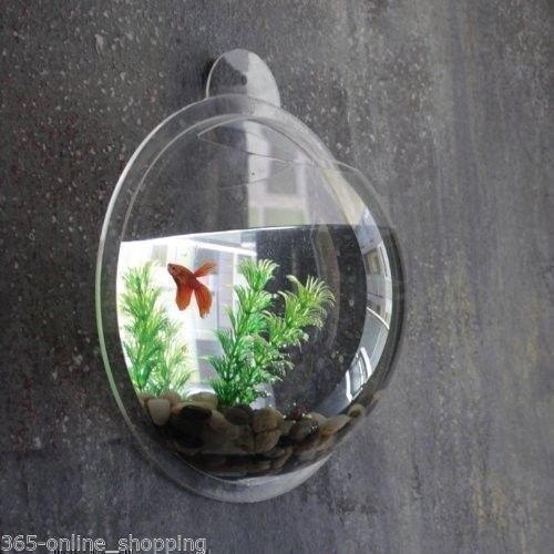 2 2 Litre Fish Wall Mounted Bowl Aquarium Hanging Tank