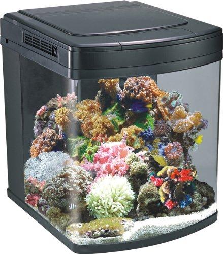 Aquarium nano cube marine fish tank 128 litres hs 60 for Decoration aquarium 60 litres