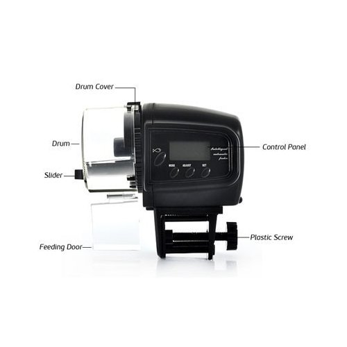 Automatic fish feeder with lcd display pets lovers top store for Best automatic fish feeder
