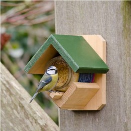 Kingfisher Bird Feeding Station Pets Lovers Top Store