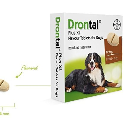 Drontal Plus XL Dog Worming Tablet (UK)