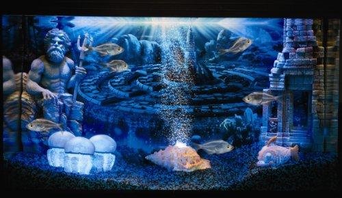 Hydor H2show Magic World Aquarium Background And Fixing