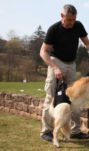 Pfaff Medical Dog Back Carrier Harness Large Pets