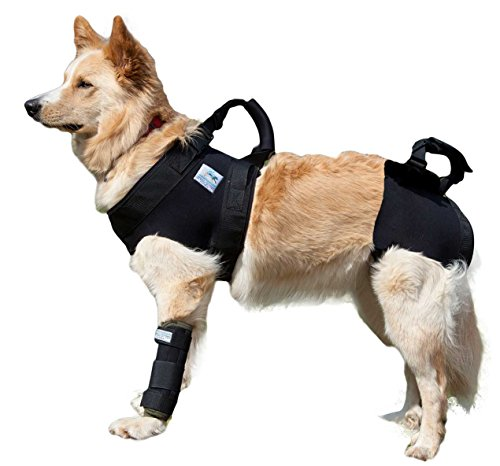 Pfaff Medical Dog Back Carrier Harness Large Pets