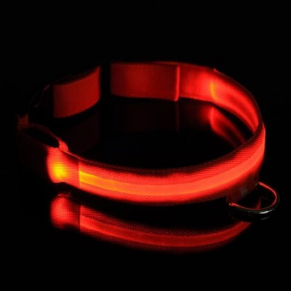 Keeps The Collar Your Safety In DogsFlashing Lights Dog Up For DarkLuminous Led Where Is CollarSee 8vnwPON0ym