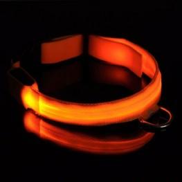 Dog Collar Lights Uk