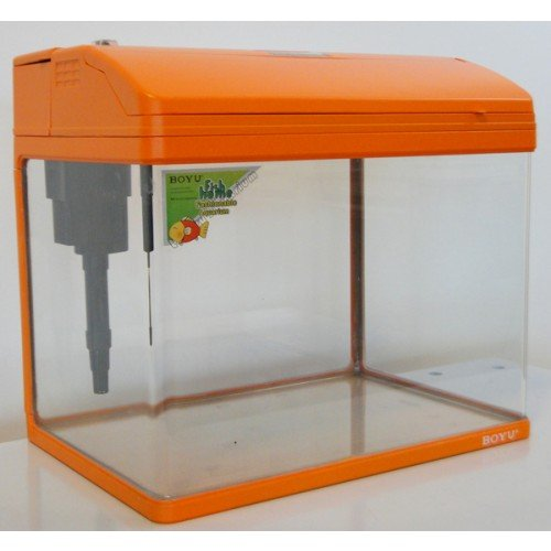 Small nano 37 litre tropical coldwater fish tank for Google fish tank mrdoob