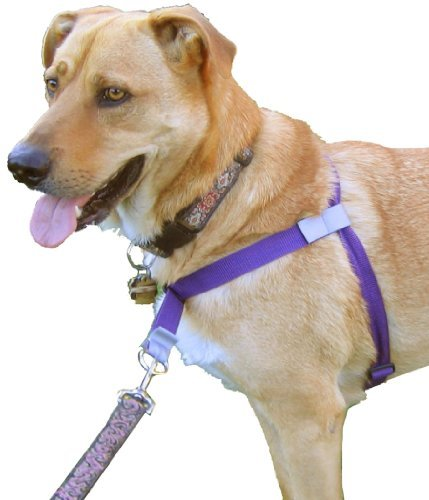 Walk Your Dog With Love Front leading No Pull Harness The Worlds Best Dog Harness Black Night 110 250 lbs 0 walk your dog with love front leading, no pull harness the front lead dog harness at couponss.co